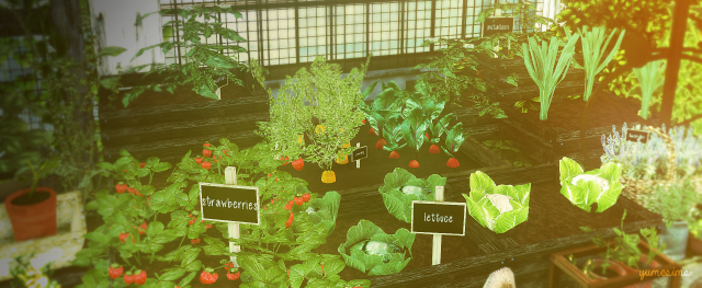 TS2 Little Veggie Garden Conversions by YumeSims