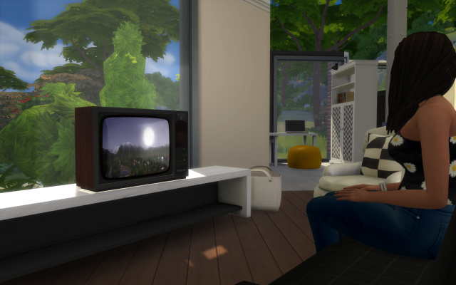 TS3 Retro TV Conversion от HoneySim