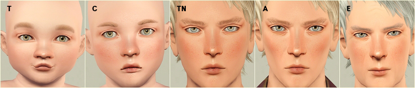 FaceSkin V6 by Tifa