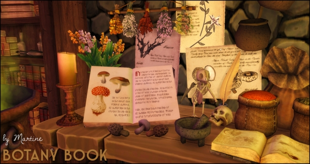 Botany Books Clutter by Martine