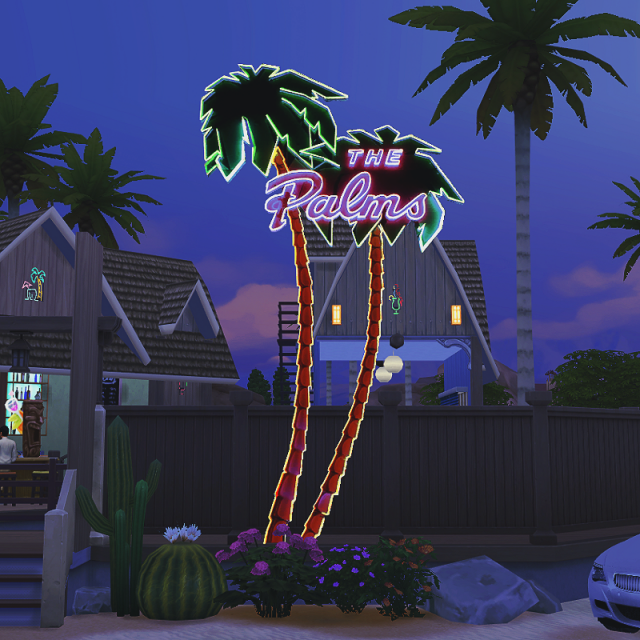 """The Palms"" neon light + backboard requested by DominationKid"