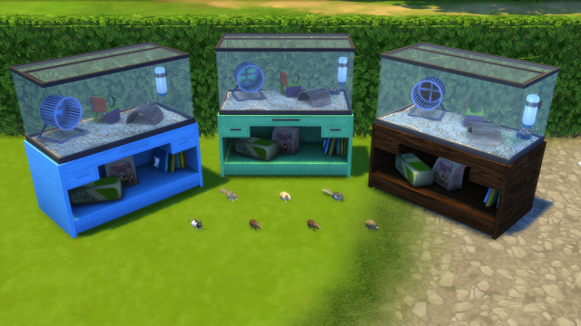 ts3 to ts4 Rodent Terrarium by EnureSims
