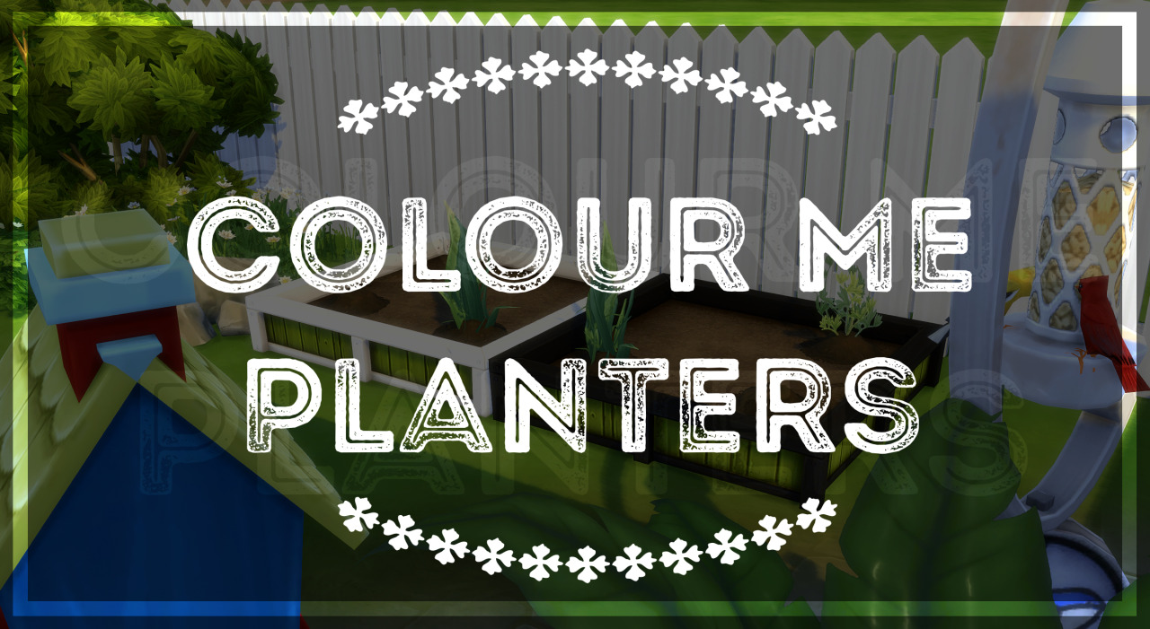 Color Me Planters by PictureAmoebae