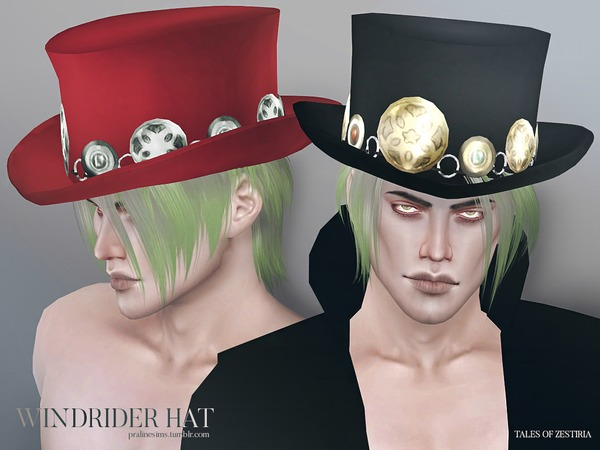 Windrider Hat by Pralinesims