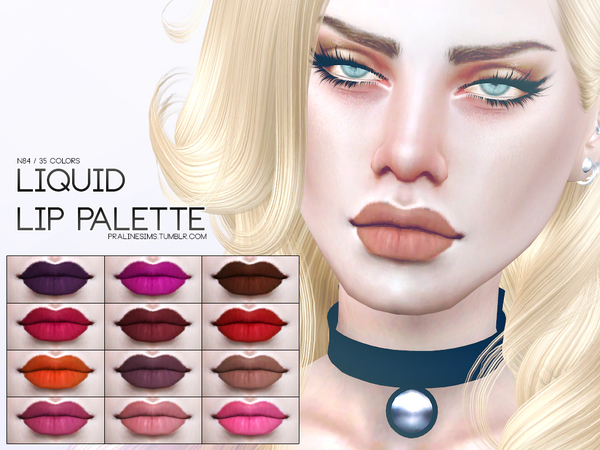 Liquid Lip Palette N84 by Pralinesims