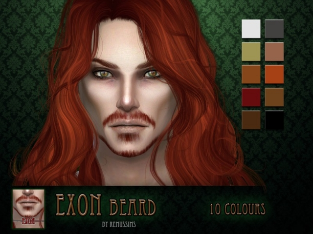 Exon Beard by RemusSirion