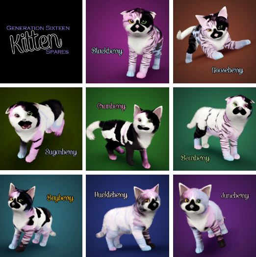 Generation 16 Kitten Spares - Part  от catlover800