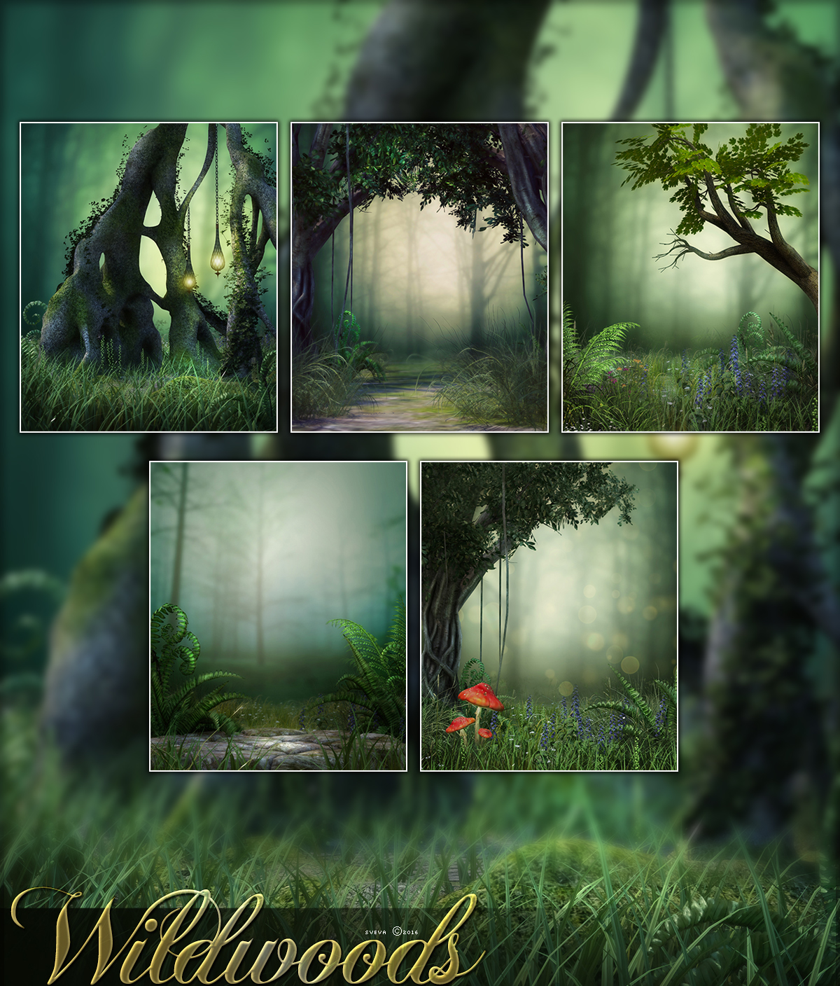 Wildwoods Backgrounds by Anarchy-Cat