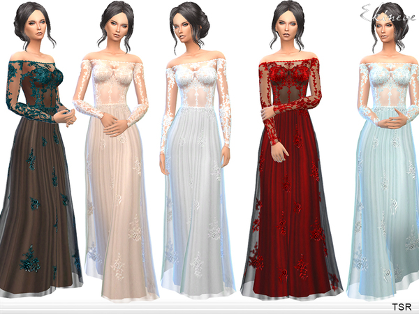 Transparent Gown With Lace Applique by ekinege