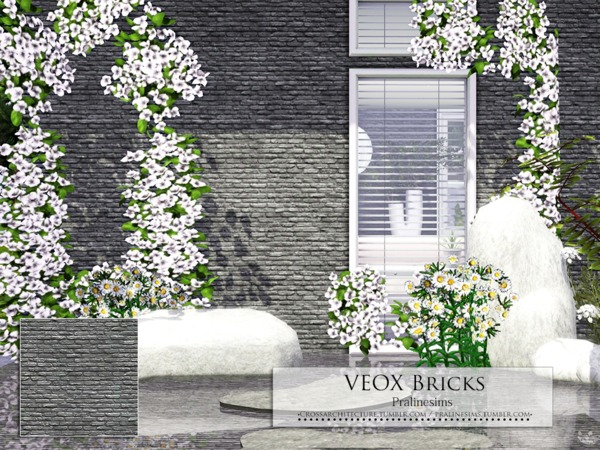 VEOX Bricks by Pralinesims