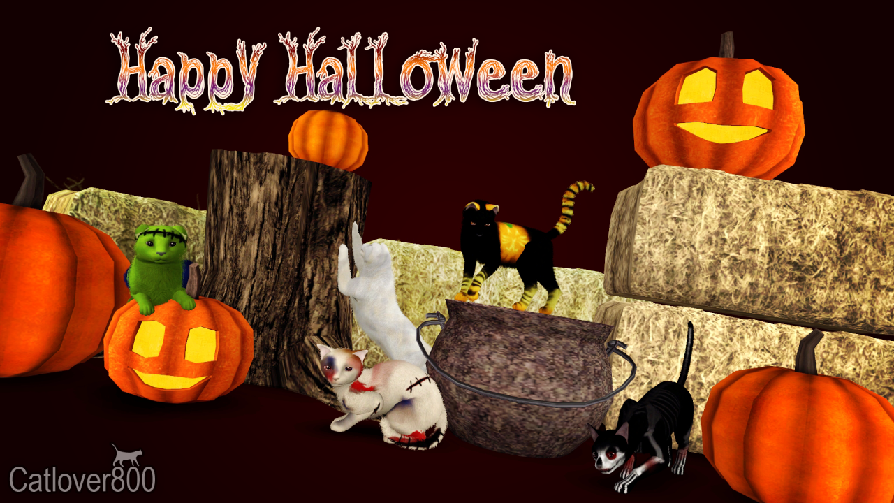 Halloween 2016 Cat Poses от catlover800