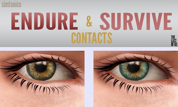 Endure and Survive Eyes by Simtanico