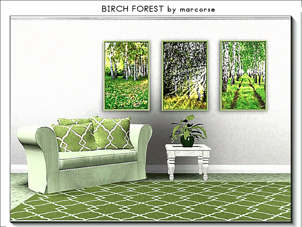 Birch Forest_marcorse