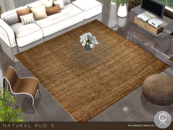 Natural Rug 3 by Pralinesims