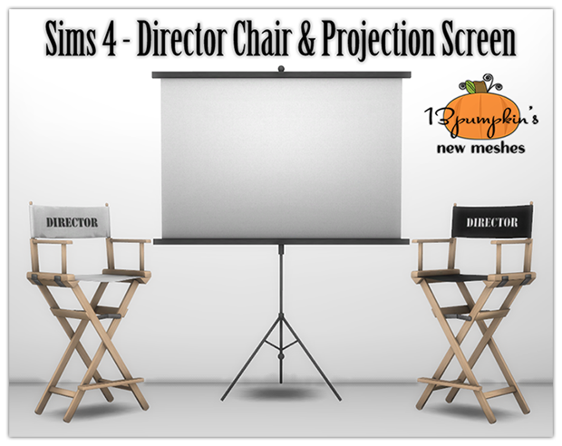 Director's Chair and Projection Screen by 13Pumpkin31