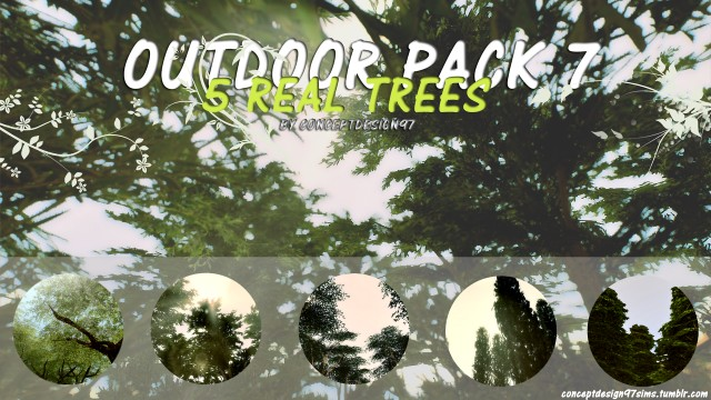 Outdoor Pack 7 - 5 Real Trees by ConceptDesign97