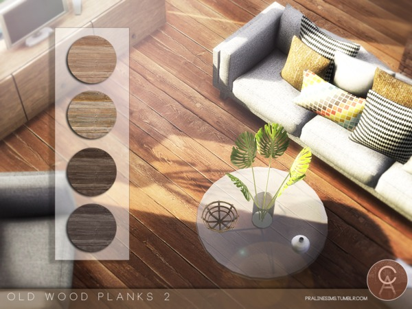 Old Wood Planks 2 by Pralinesims