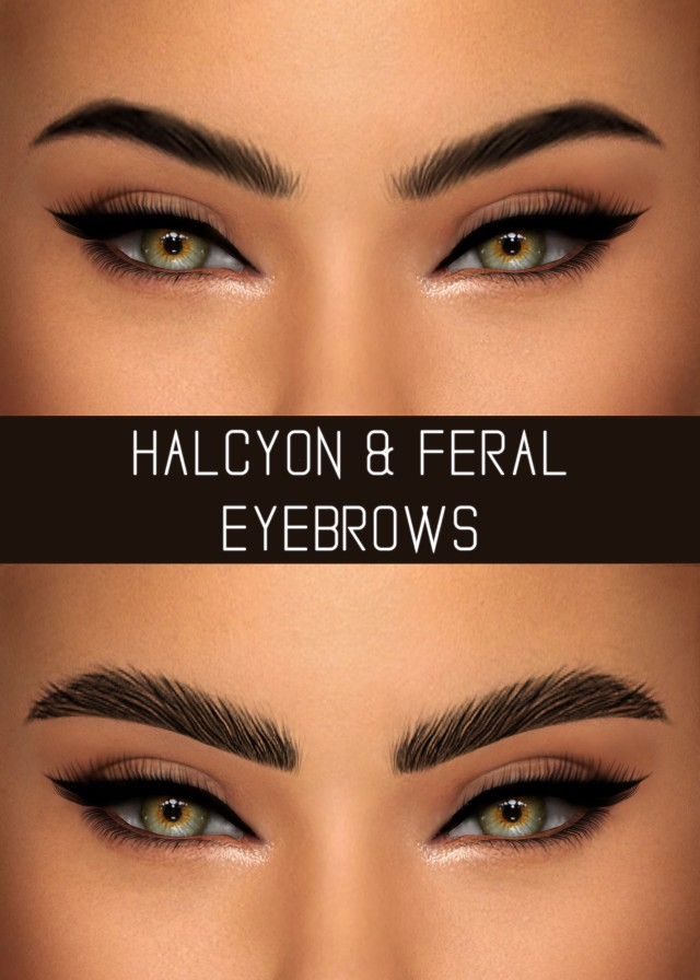 HALCYON & FERAL EYEBROWS by SIMPLICIATY