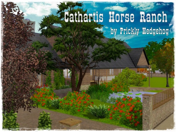 Cathartis Horse Ranch by Prickly Hedgehog