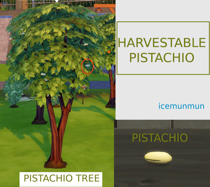 Custom Harvestable Pistachio by icemunmun