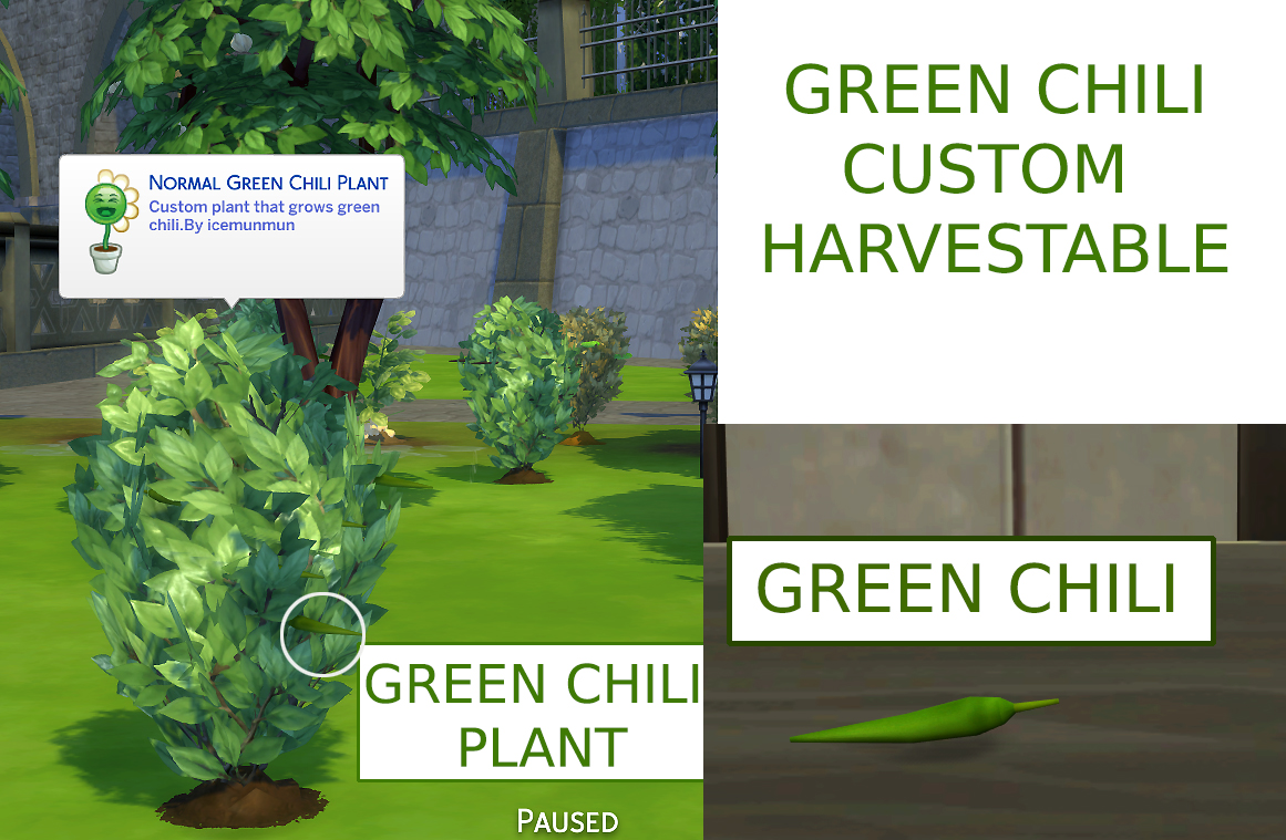 Custom Harvestable Green Chili by icemunmun