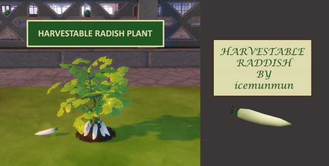 Custom Harvestable Radish/Daikon by icemunmun