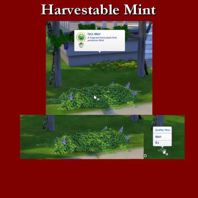 Harvestable Mint by Leniad