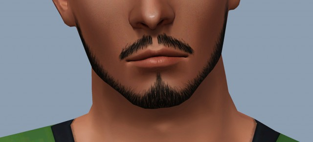 Dynasty Beard by Enless