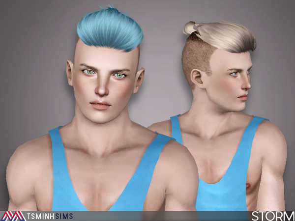 Storm ( Hair 45 ) by TsminhSims