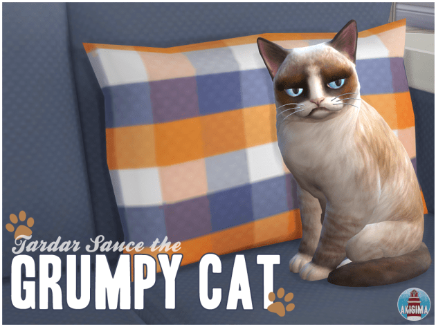 Grumpy Cat by Akisima