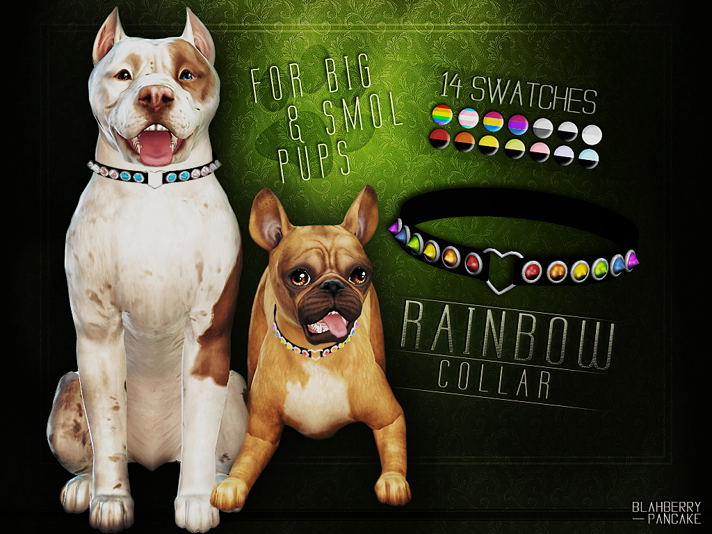 Rainbow Collar for Pets by Blahberry Pancake