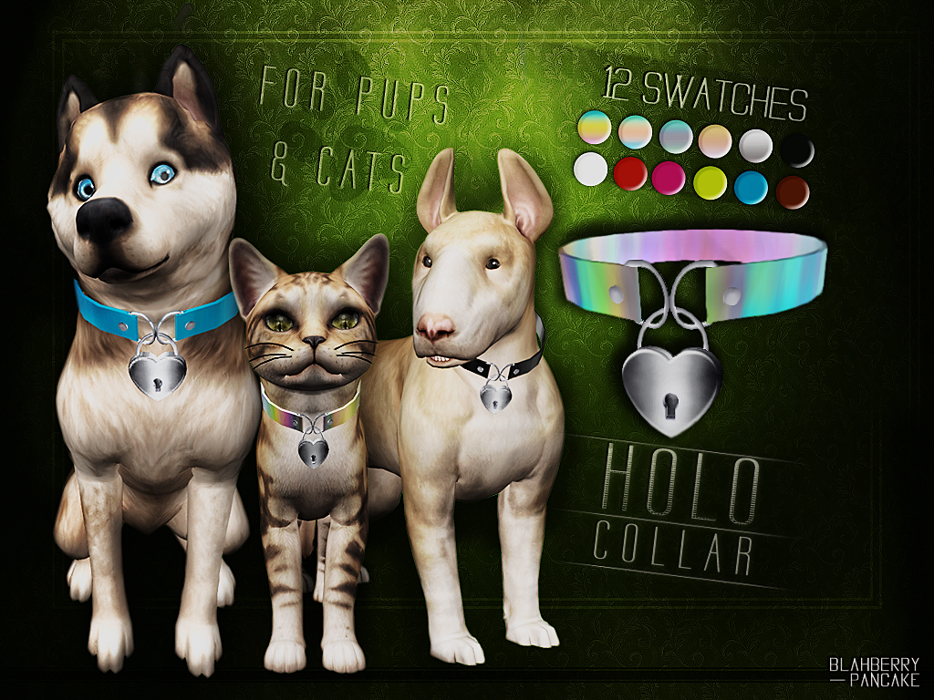 Holo Collar for pups & cats by Blahberry Pancake