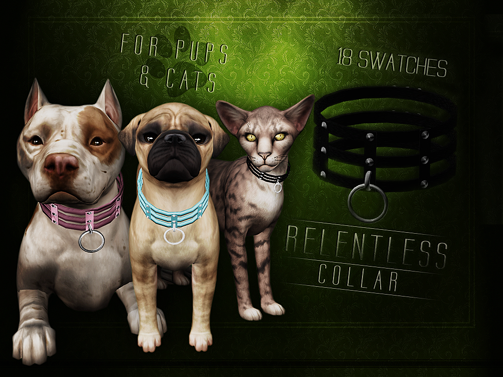 Relentless Collar for pups & cats by Blahberry Pancake
