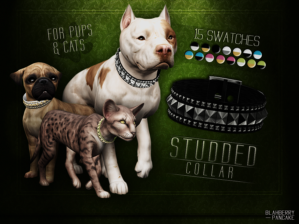 Studded Collar for pups & cats by Blahberry Pancake