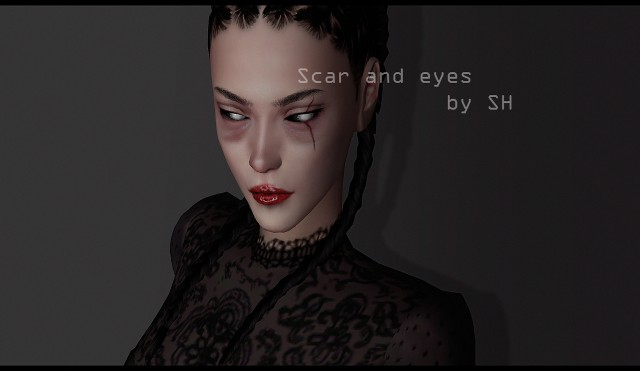 Scar and eyes by SH