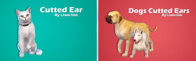 Cutted Ear by Liam-Sim