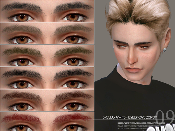 S-Club WM ts4 Eyebrows M 201709