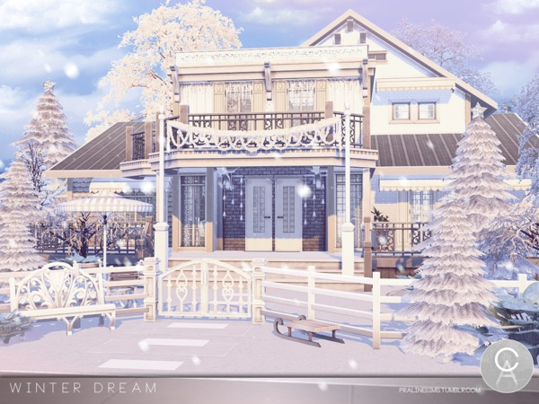 Winter Dream by Pralinesims
