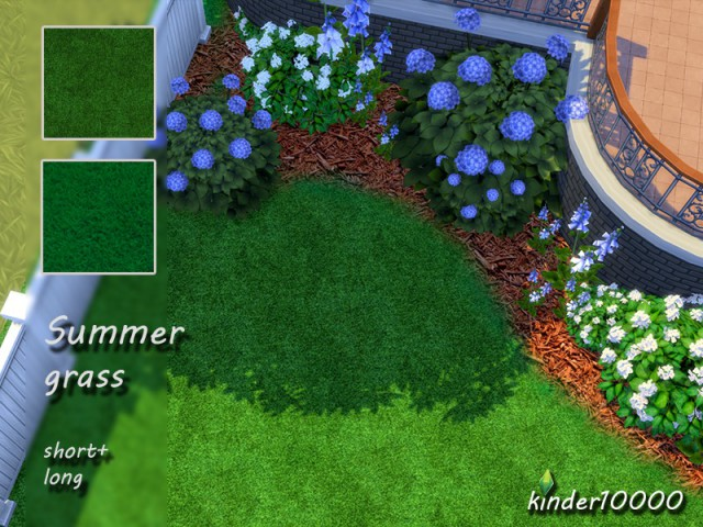 Summer grass set by kinder10000