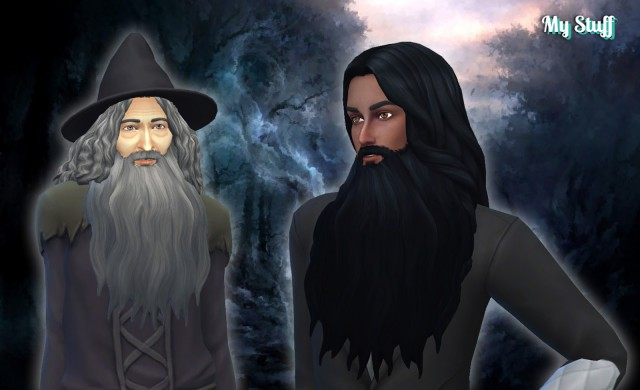 Wizard Beard by Kiara24
