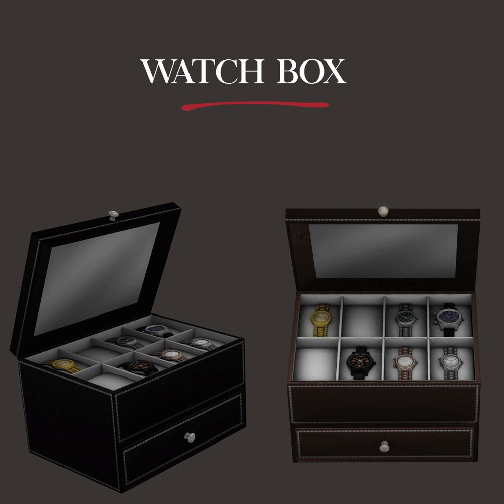 Watch box by Leo-Sims