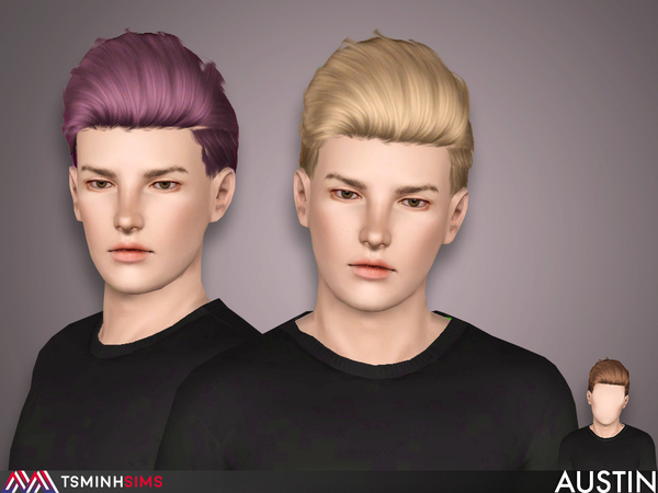 Austin ( Hair 54 ) by TsminhSims