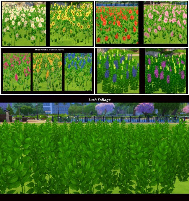Early Spring: Fields of Wildflowers by Snowhaze