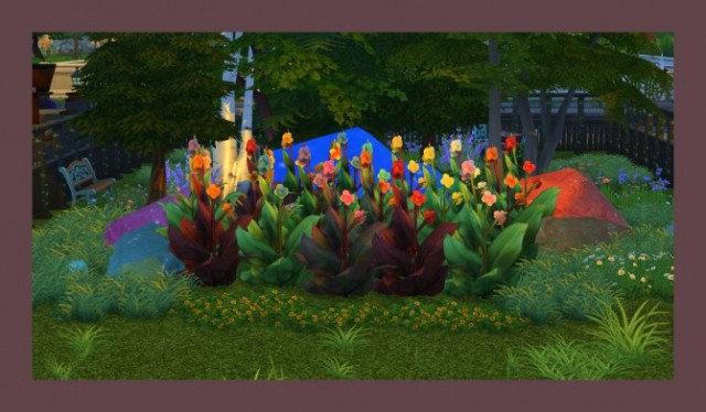 Canna Plant - 20 Recolours by Simmiller