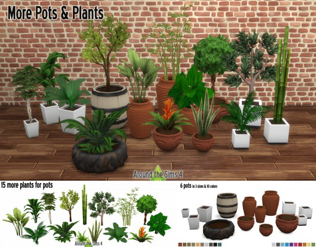Pots & Plants # 2 by Sandy