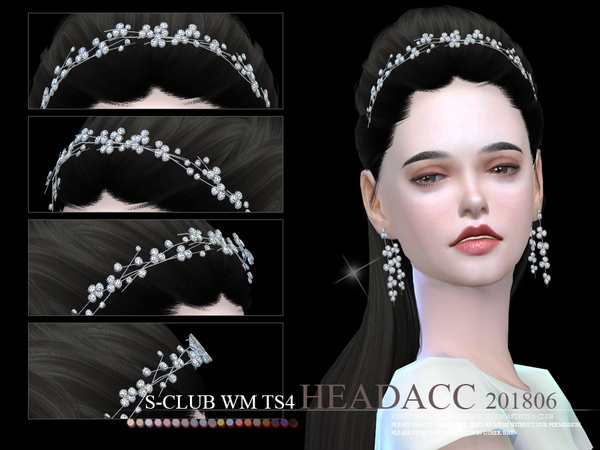 S-Club ts4 WM Headacc F 201806