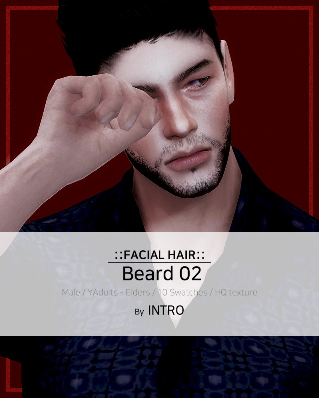 Beard 02 by Introsims