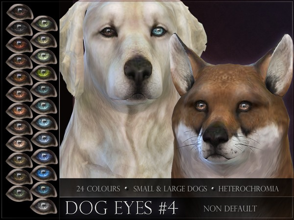 Dog Eyes 04 by RemusSirion