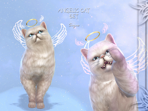 [Suzue] Angelic Cat Set