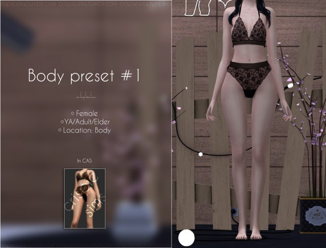 Body Preset #1 by Crispiesims
